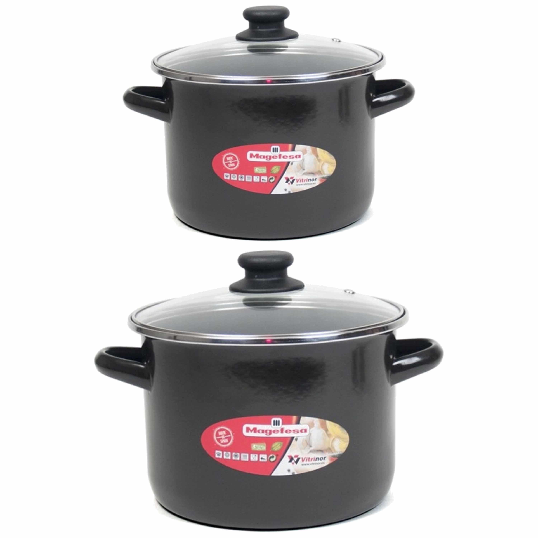 Set van 2x soeppannen met glazen deksel 6 liter en 8 liter